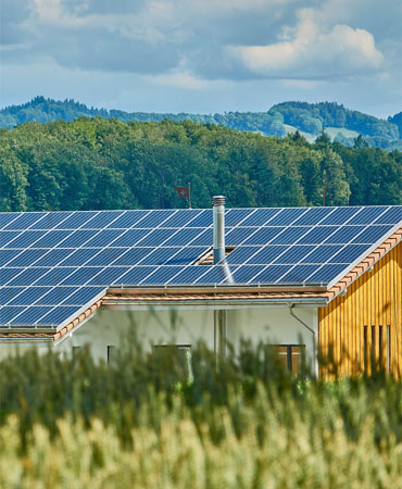 Photovoltaik Landwirtschaft